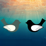 logo_AICINAAM_UZ_MAARTINJSKOLU